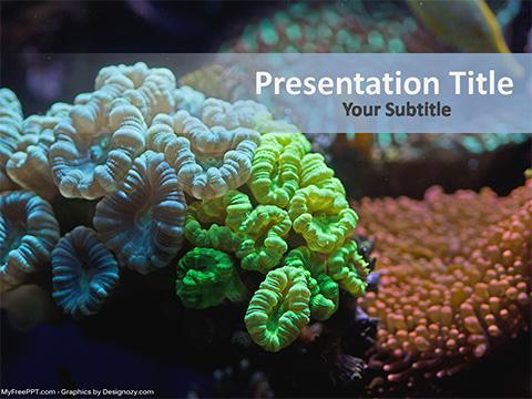 Free Underwater Coral Reef Powerpoint Template Download