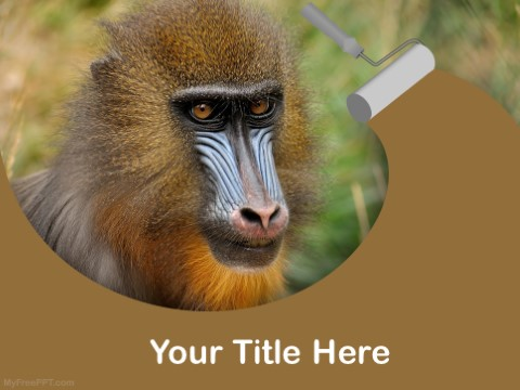 Free Apes And Monkey PPT Template