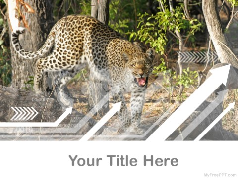 Free Botswana PPT Template