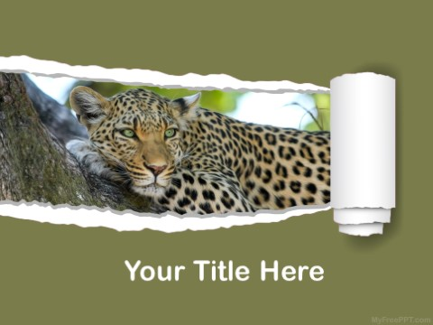 Free Carnivore Animal PPT Template