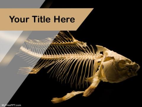 Free Fish Skeleton PPT Template