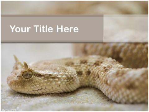 Free Horned Viper Snake PPT Template