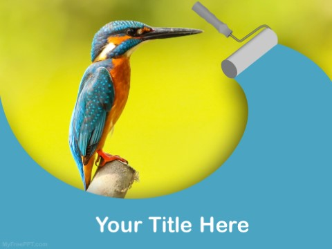 Free Kingfisher PPT Template