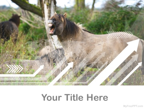 Free Mule PPT Template