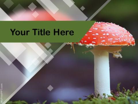 Free Mushroom PPT Template