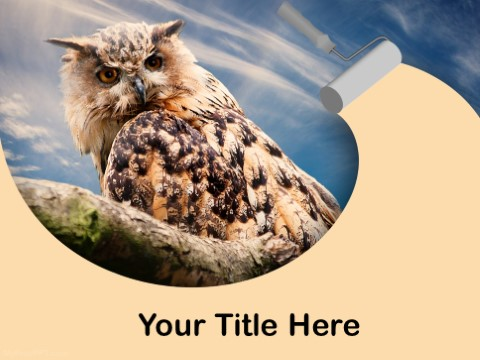 Free Owl PPT Template