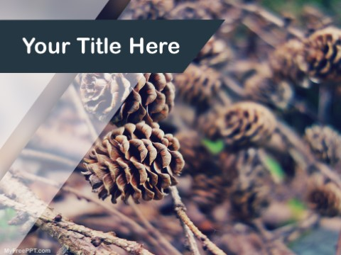 Free Pine Cones PPT Template