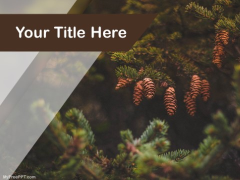 Free Pine Trees PPT Template