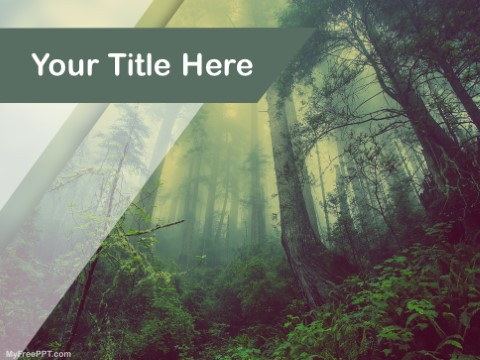 Free Rain Forest PPT Template