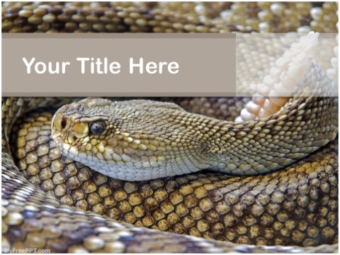 Free Rattle Snake PPT Template
