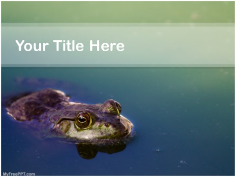 Free Toad PPT Template