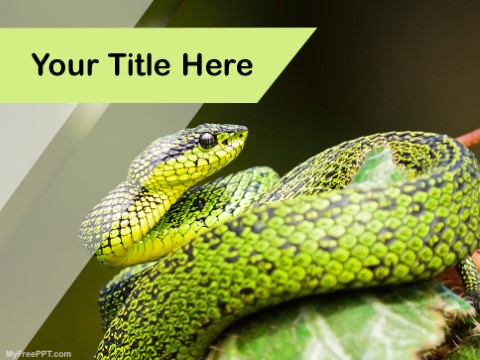 Free Tree Snake PPT Template