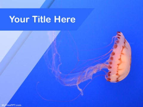 Free Underwater Jellyfish PPT Template