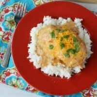 Slow Cooker Creamy Salsa Chicken