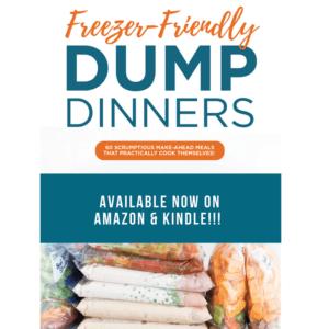 Freezer Friendly Dump Dinners Cookbook