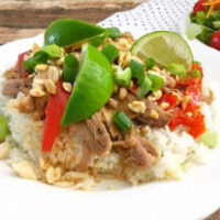 Instant Pot Shredded Pork with Thai Peanut Sauce - MyFreezEasy