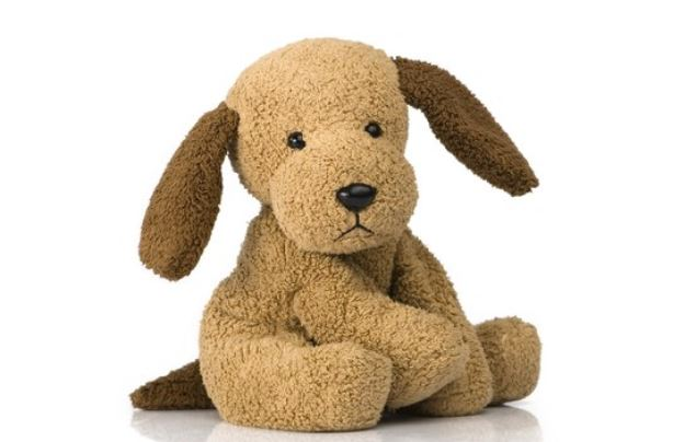 Tips to Properly Sanitize Puppy Toys