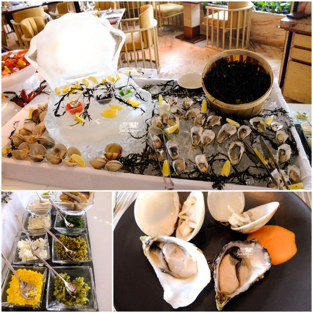 Fresh Oysters - Seafood Bar