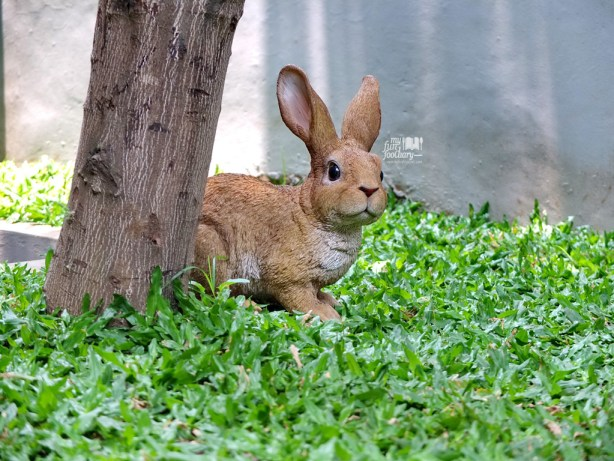 Cute Rabbit at Two Cents Coffee  - by Myfunfoodiary
