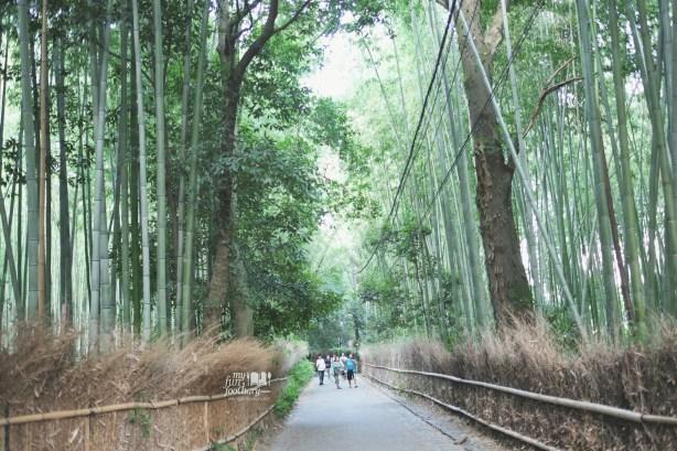 Path to Arashiyama Bamboo Grove by Myfunfoodiary