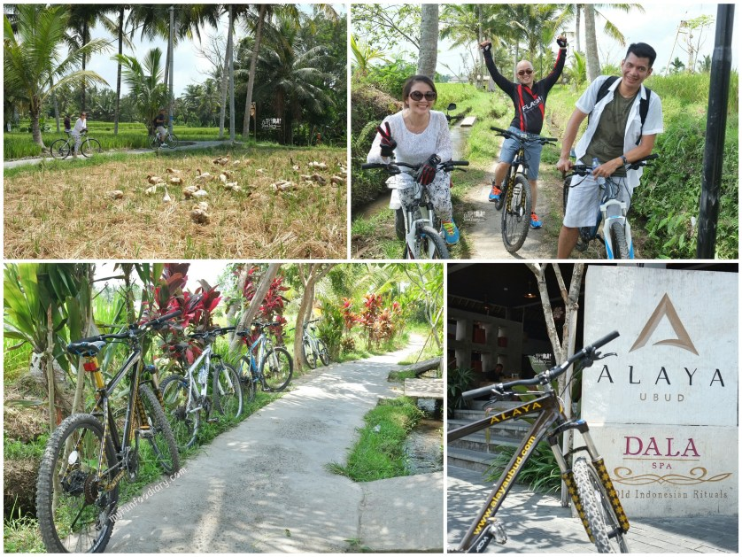 Cycling Moments Around Ubud by Myfunfoodiary