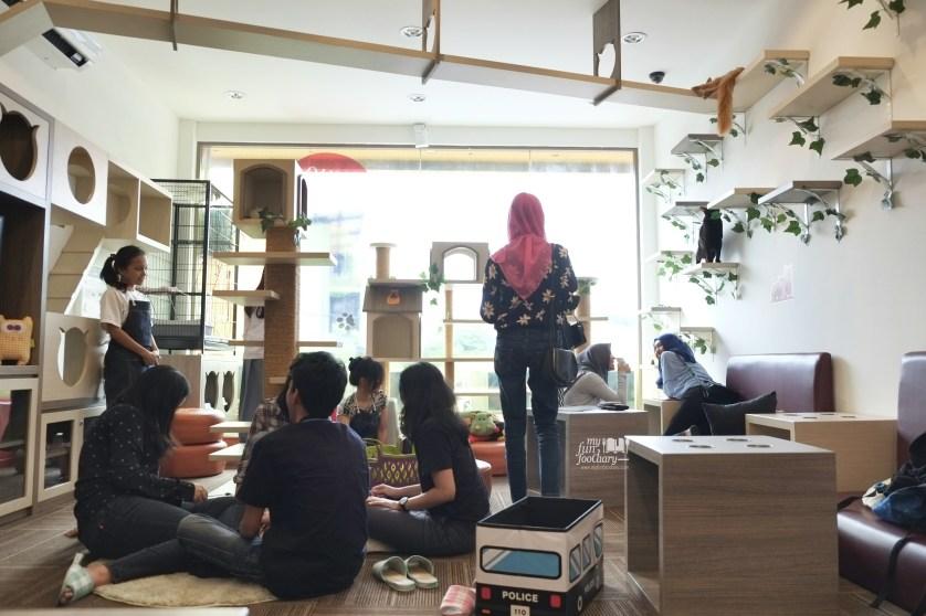 Ambiance inside Cutie Cats Cafe by Myfunfoodiary 04