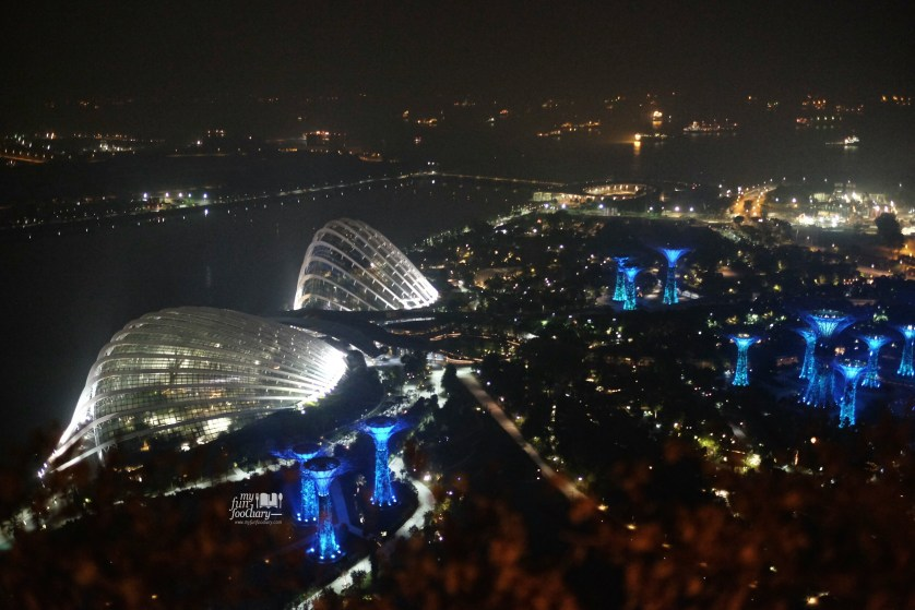Night View from my room 4318 Deluxe Room Tower 3 Marina Bay Sands to Esplanade and Garden by The Bay by Myfunfoodiary
