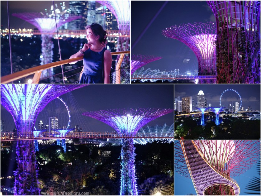 Experience OCBC Skywalk at Gardens By The Bay by Myfunfoodiary