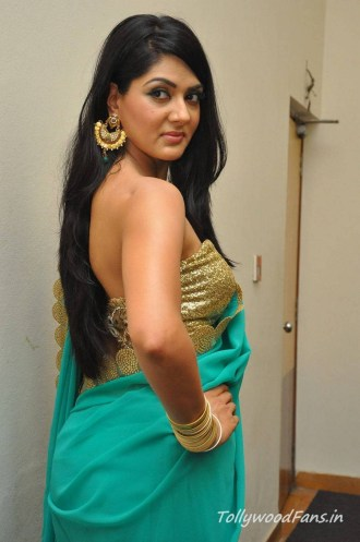 sakshi-chaudhary-photos-in-saree-16