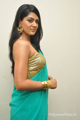 sakshi-chaudhary-photos-in-saree-6