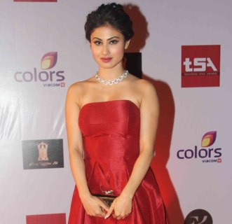 television-style-awards-2015-47