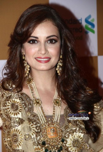 dia-mirza-swades-foundation-s-star-studded-fundraiser_1397188224130