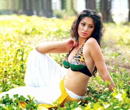 Lakshmi Roy Laxmi Rai Hot Cute HD Sizzling Cleavage Navel Boobs Images Pictures Photo Shoot Wallpapers Gallery Saree Thighs Exposed 2