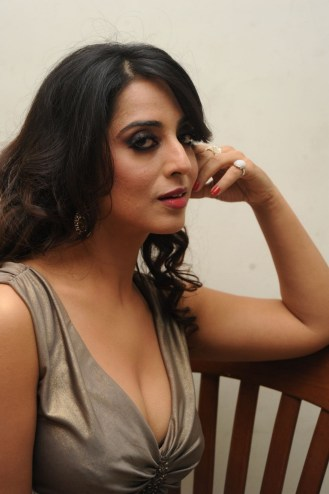 mahi-gill-spicy-photos-shreya-narayan-1697544982