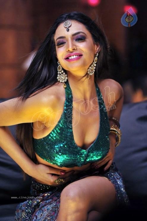 shweta_bhardwaj_item_song_photos_0206121214_056