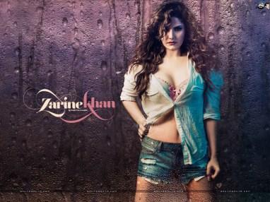 zarine-khan-12a
