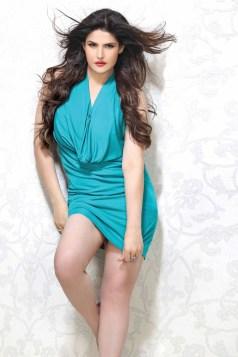 Zarine Khan Latest Hot Photoshoot In Beautiful Dress (3)