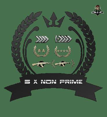 5x Non Prime Accounts