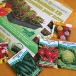 グリーンハウスキットを使って野菜の種を植える