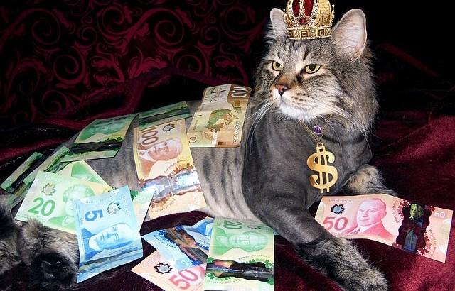 カナダ旅行に持っていくお金は現金?それともカード?