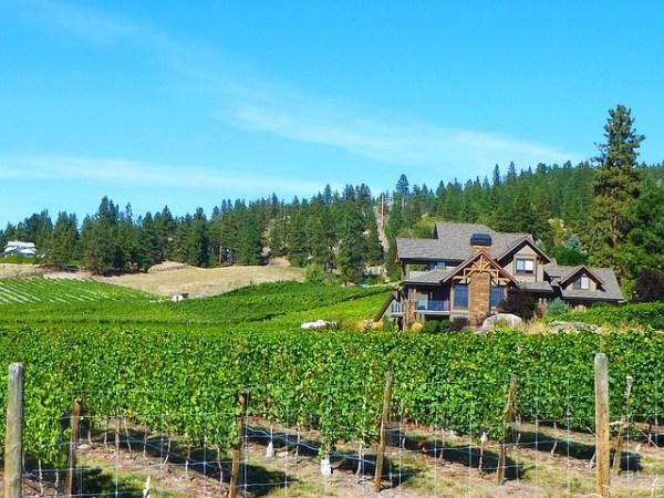 カナダのお土産おすすめアイスワイン