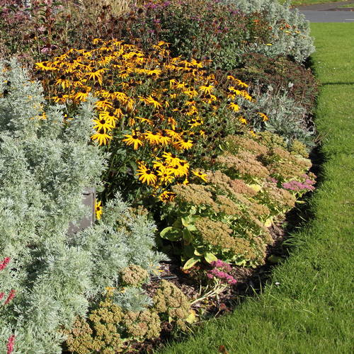 How to Prepare a Flower Bed
