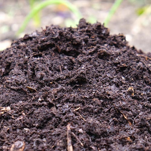How Much Compost Do I Need