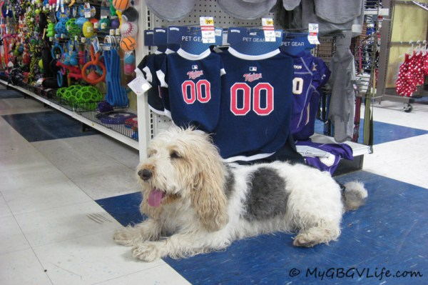 Mom! Look at these great Twins jerseys!