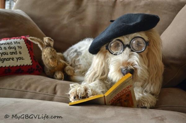 reading good dog bad dog