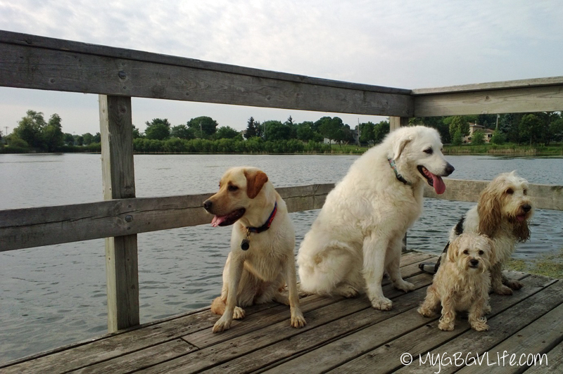 4 at the lake