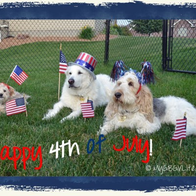 4th of July Snacks For Everyone | GBGV