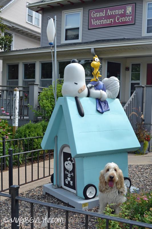 GBGV Vet Snoopy