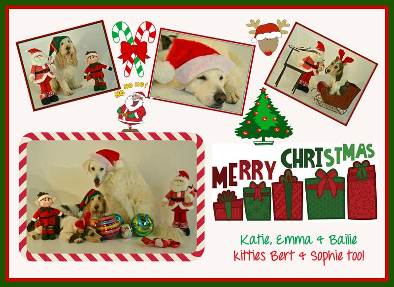 My GBGV Life 2013 Christmas card