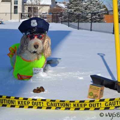 Winter is a Season, Not an Excuse! | GBGV | #ScoopThatPoop